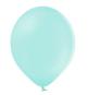 10 Ballons Gonflables Latex Vert Mint Pastel Poudré Fête