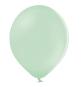 10 Ballons Latex Vert Pastel Poudré 30cm Latex Sempertex Fête