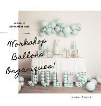Formation Niveau Avancé Workshop Ballons Organiques - 17 septembre 2019