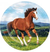 Grandes assiettes thème Cheval et équitation - Anniversaire pour enfants