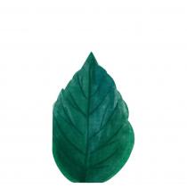 Grandes Serviettes Feuilles En Papier Vert Foncé Vaisselle Jetable