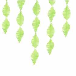 Guirlande Serpentin à Franges Vert Anis Papier Crépon Décoration de Fête