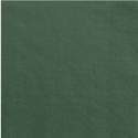 Serviettes en Papier Vert Eméraude