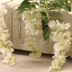 Fleurs Grandes Glycines Blanches Fleurs Artificielles Premium