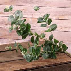 Branches d'Eucalptus - Feuilles artificielles Décoration