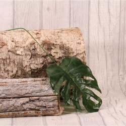 10 Feuilles Jungle de Monstera - Feuillage artificiel