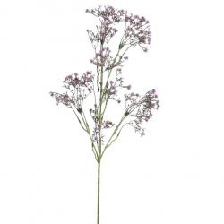 Branche de petites fleurs violettes Type Allium
