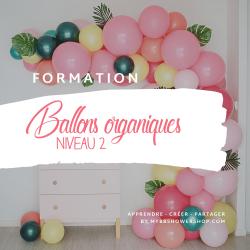Formation Niveau Avancé Workshop Ballons Organiques