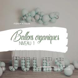 Formation Workshop Ballons Organiques - Niveau 1
