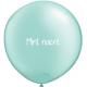Mini ballons organiques 100 mini ballons
