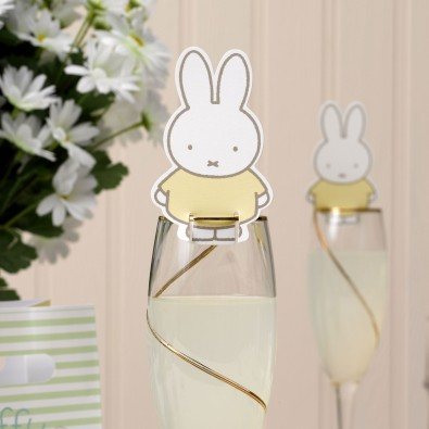 D corations pour verre marque nom th me baby miffy for Decoration porte nom