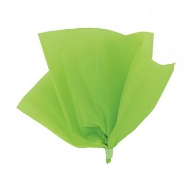 10 Feuilles Papier de Soie Vert anis