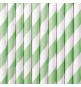 10 Pailles Rétro Rayées Vert Pastel et Blanc