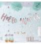 Banderole Rose Cuivré Hello World  Baby Shower