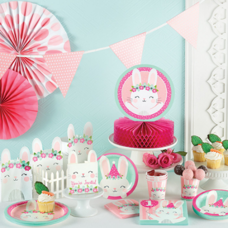 Baby Shower Lapine Rose et Mint